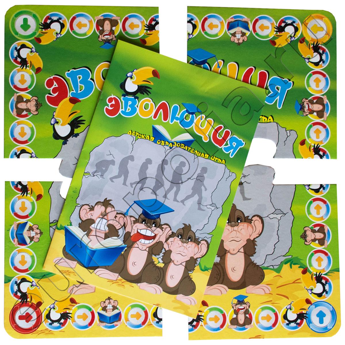 Детская образовательная игра Эволюция игровое поле 43541 С-106